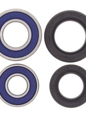 Wheel Bearing and Seal Kit